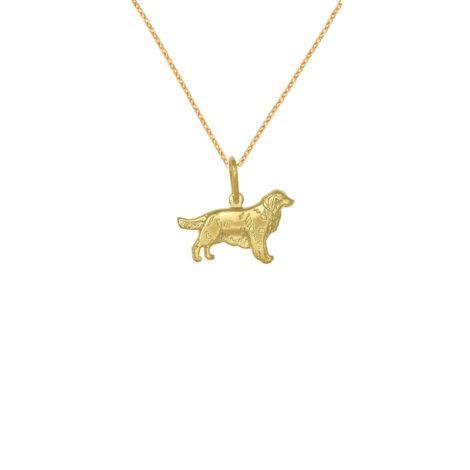 colar cachorro golden banhado folheado ouro amarelo semijoia antialergica brilho folheados